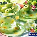 Столовый сервиз Luminarc POEME ANIS 38+7 ПРЕДМЕТОВ 6 ПЕРСОН, фото 2