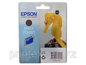 Картридж Epson C13T04814010 R200/R300/RX500/RX600 черный