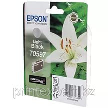 Картридж Epson C13T05974010 R2400 серый