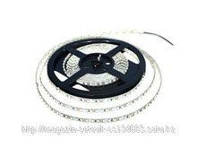 Светодиодная лента (LED) 3528-1m-60 led White 24w
