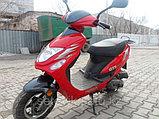 PEDA GTS 50, фото 2