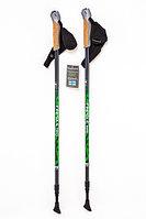 Карбоновые палки для скандинавской ходьбы Finpole Nova 30% (серо-зеленый, Финляндия)