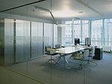 Цельностеклянные офисные перегородки, фото 4