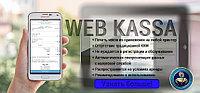ККМ WEB KACCA (12 месяцев)