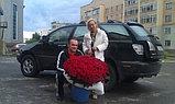 201 голландская роза (70см), фото 2