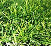 Трава искусственная для футбола 12000dtex40мм, фото 1