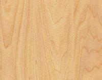 Спортивное покрытие Taraflex Sport M Performance Wood Maple Design