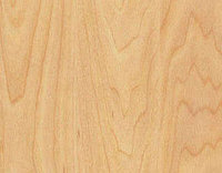 Спортивное покрытие Taraflex Surface Wood Maple Design