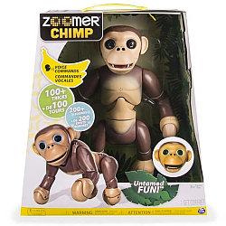 Zoomer Chimp (Английский язык)