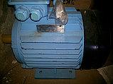Электродвигатель Двигатель, фото 2