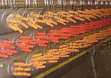 Пальцы резиновые бильные Plumatech (Плюматек) для обесперивателей птицы, фото 3