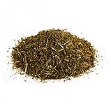 Зверобой, трава, 30гр, фото 2