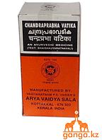 Чандрапрабха Ватика Коттаккал (Kottakkal Arya Vaidya Sala), 100 таб