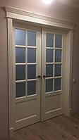 Нестандартная двухстворчатая дверь