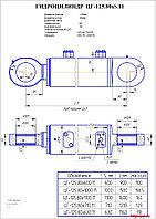 Гидроцилиндр стрелы, ковша цг-125.80х1100.11 на ЕК-18, ЕТ-18