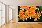 Фотообои Азалия оранжевая, фото 2