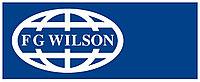 Воздушный фильтр FG WIlson 923-055