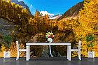 Фотообои Французские Альпы, водопад, фото 3