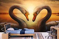 Фотообои Лебеди на закате