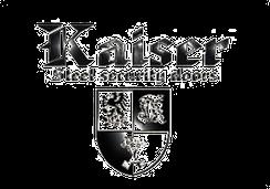 Двери входные Kaiser