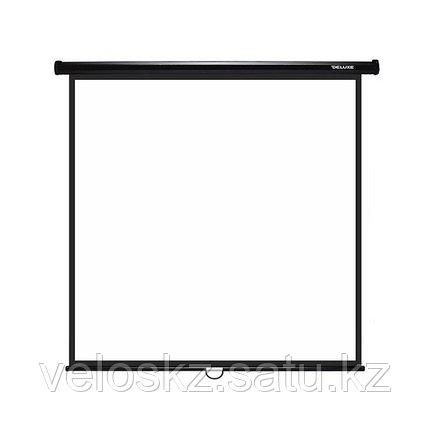 Экран для проекторов Deluxe DLS-M203x, настенный, фото 2