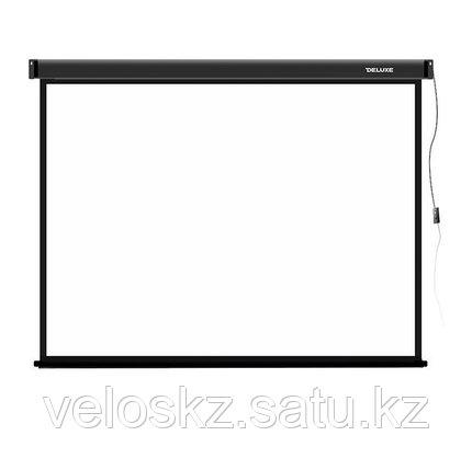 Экран для проекторов, Deluxe, DLS-E274-206, Моторизированный, фото 2