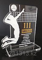 Спортивная награда волейбол