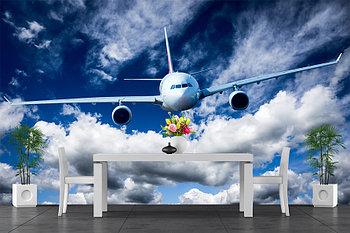 Фотообои Самолет в полете