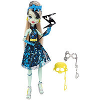 Monster High: Весёлая фотобуу-дка, Frankie Stein