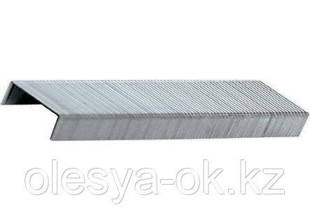 Скобы, 8 мм, для мебельного степлера, тип 53, 1000 шт.// MATRIX, фото 2