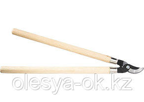 Сучкорез, 640 мм, из углеродистой стали, деревянные ручки.  PALISAD, фото 2