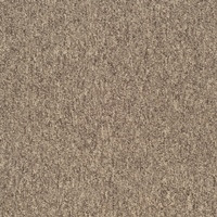 Ковровая плитка SKY (500х500)