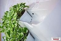 Автополив для комнатных растений BOXSAND