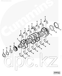 Коленвал, вкладыши, шестерни Cummins 6CT, ISC, QSC