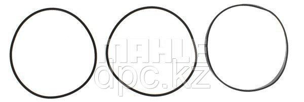 Комплект уплотнительных колец гильзы цилиндра Clevite 223-7077 для двигателя Cummins 3032874
