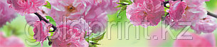 Кухонный фартук УФ  Розовые цветы, фото 2