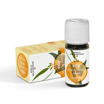 Эфирное масло ЭВКАЛИПТ- простуда, бронхит,ангина, цистит,простатит