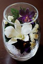 Живые цветы в стекле RmiO