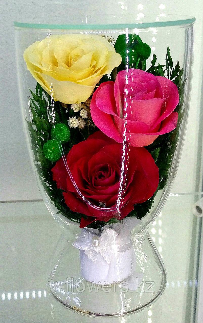 Цветы в стекле CuLR5c