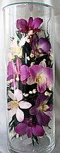 Живые цветы в стекле CLO-01