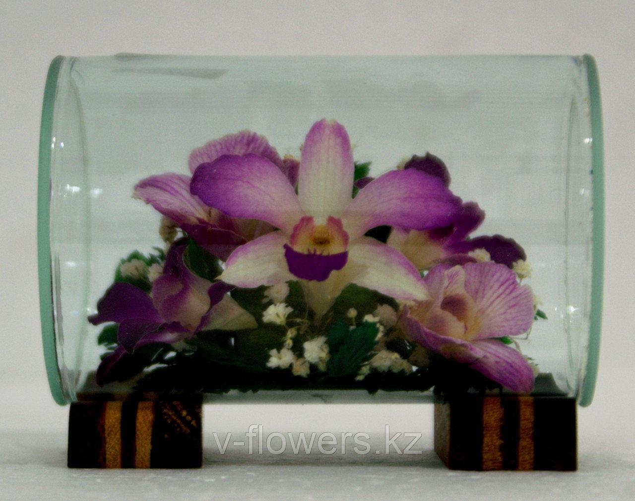 Цветы в вакууме TmiO