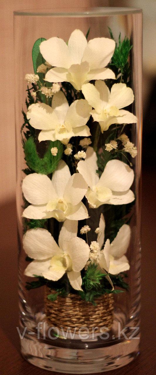 Живые цветы в стекле CLO-02