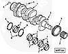 Вкладыши коренные упорные (комплект; 1верх + 1 низ) Cummins A2300 4900235, фото 3