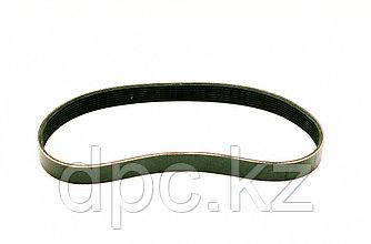 Ремень генератора 8PK795 Weichai WD615  612600090201