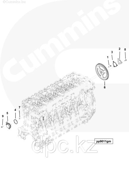 Кольцо уплотнительное крышки распредвала Cummins ISG12 3695901