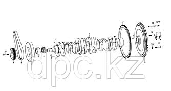 Вкладыш цилиндрический коленчатого вала Weichai WD615 Евро-3  90003901504