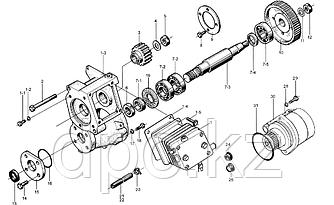 Шестерня воздушного компрессора Weichai WD615  61560130012