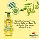 Детский шампунь с оливковым маслом (Olive Shampoo DERMOVIVA BABY), 200 мл., фото 2