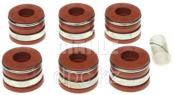 Комплект маслосъемных колпачков Victor Reinz SS45411A для двигателя Cummins 6BT5.9 3921640 3901097 3921639