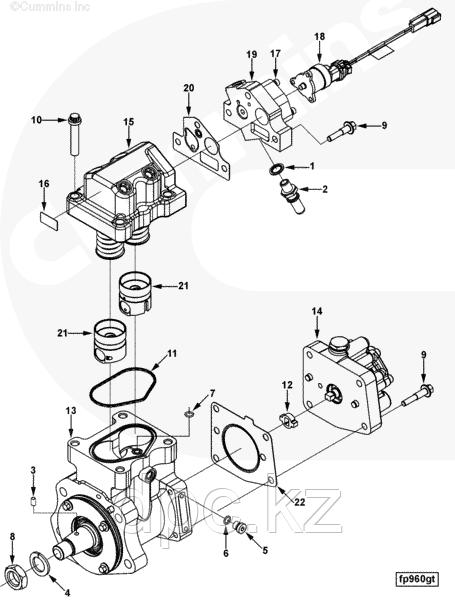 Головка топливного насоса высокого давления Cummins ISL QSL ISL9 4954199 4307384